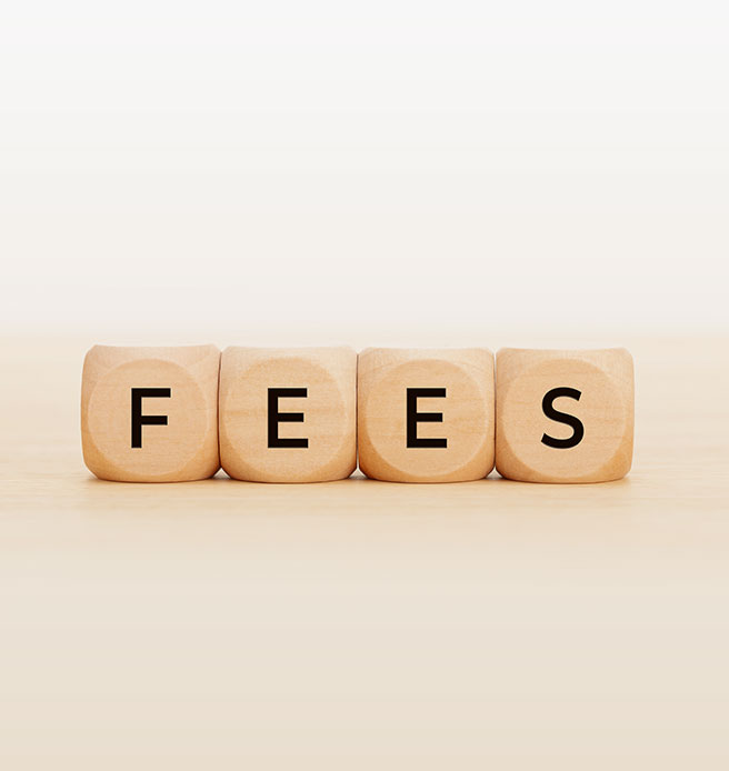 Wooden block with alphabet building the word FEES